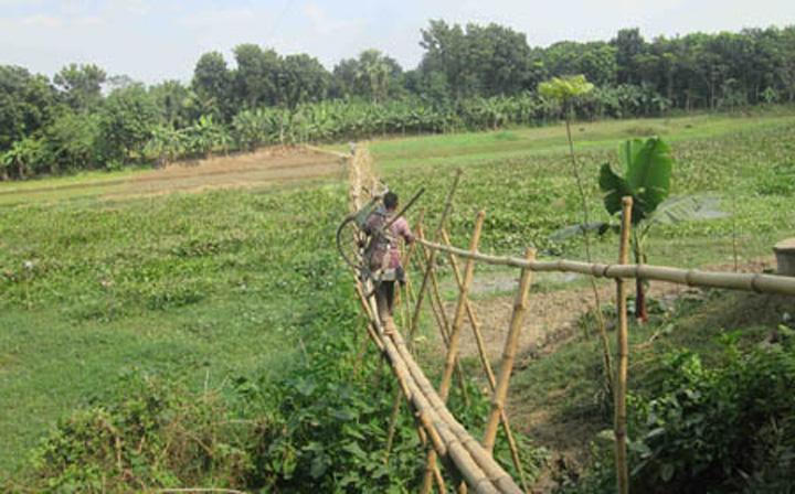 মহেশপুরে ৬ গ্রাম মানুষের বাঁশের সাঁকোই ভরসা, বর্ষার মৌসুমে দুর্ভোগ চরমে