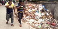 A-dustbean-in-Shailkupa-tow (1)