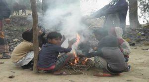 Sreemangal Pic 2, 08.01.2020