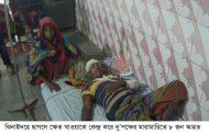 ঝিনাইদহে ছাগলে ক্ষেত খাওয়াকে কেন্দ্র করে বাক-বিতন্ড: দু'পক্ষের মারামারিতে ৮ জন আহত
