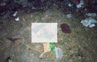 ত্রিশালে ময়লার স্তুপ থেকে নবজাতকের লাশ উদ্ধার